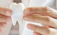 сколько всего зубов у человека